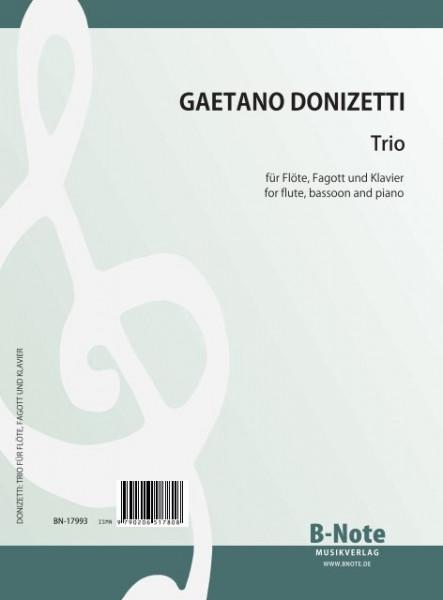 Donizetti: Trio für Flöte, Fagott und Klavier