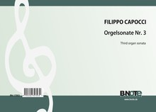 Capocci: Third organ sonata in g minor