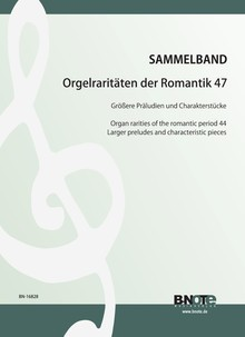 Diverse: Organ rarities of the romantic period 47: Larger preludes and characteristic pieces
